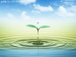 潍坊泰洁环保水处理设备有限公司
