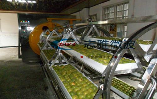 桂林客户定做的2台30KW微波罗汉果真空干燥机调试成功