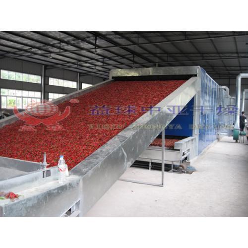 紅花和番紅花烘干設備/ 藏紅花 干紅花專用帶式干燥機