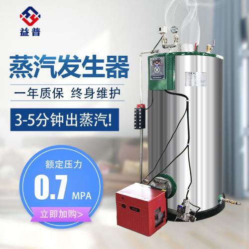 亮普0.3燃气蒸汽发生器
