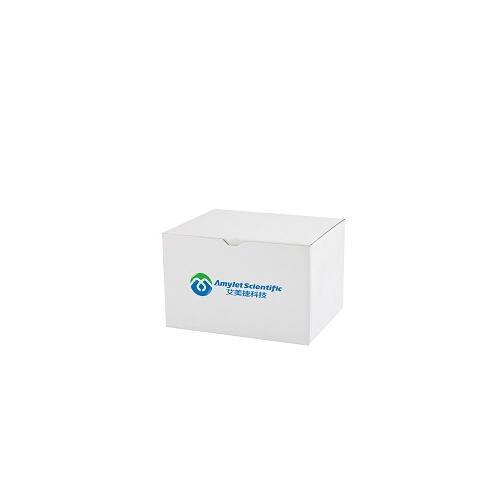 慢病毒滴度检测试剂盒